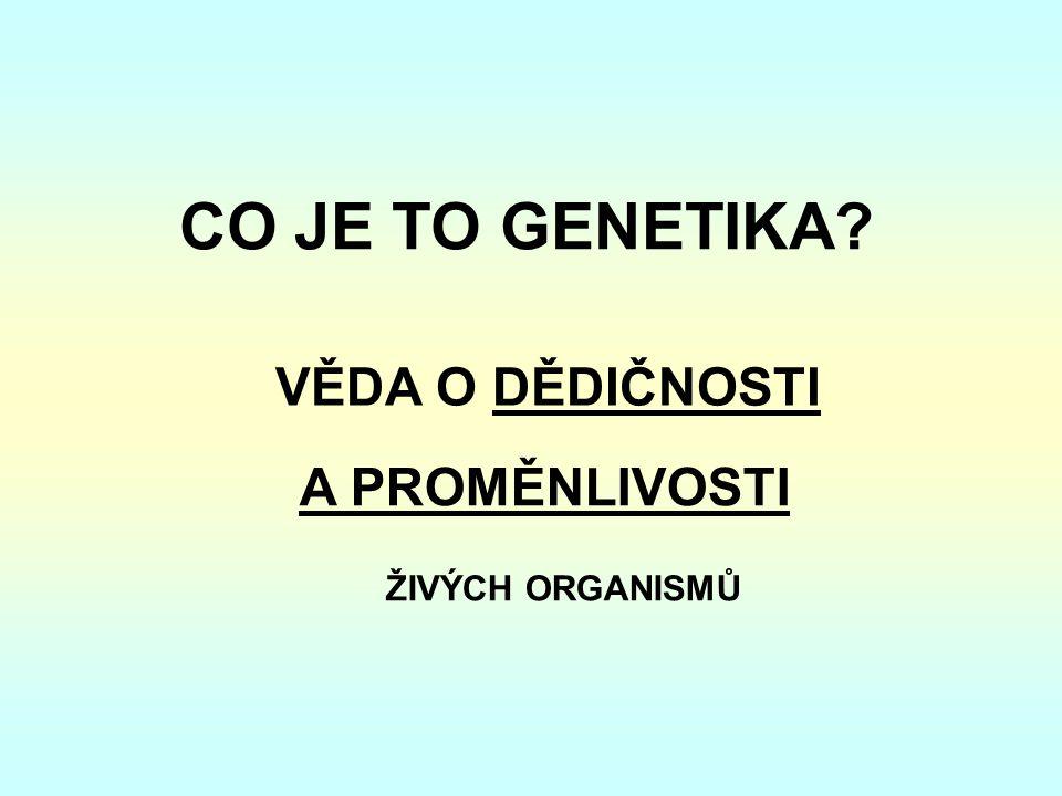 CO JE TO GENETIKA? VĚDA O DĚDIČNOSTI A PROMĚNLIVOSTI ŽIVÝCH ORGANISMŮ