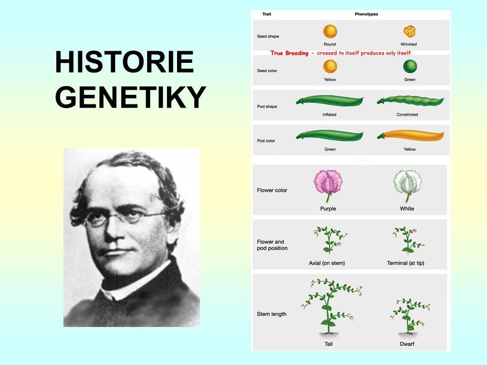 HISTORIE GENETIKY