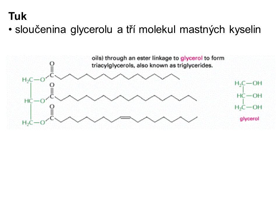 Tuk sloučenina glycerolu a tří molekul mastných kyselin
