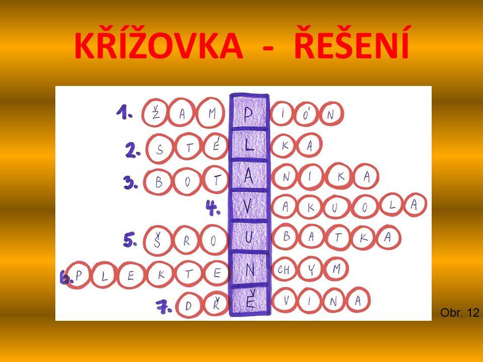 KŘÍŽOVKA - ŘEŠENÍ Obr. 12