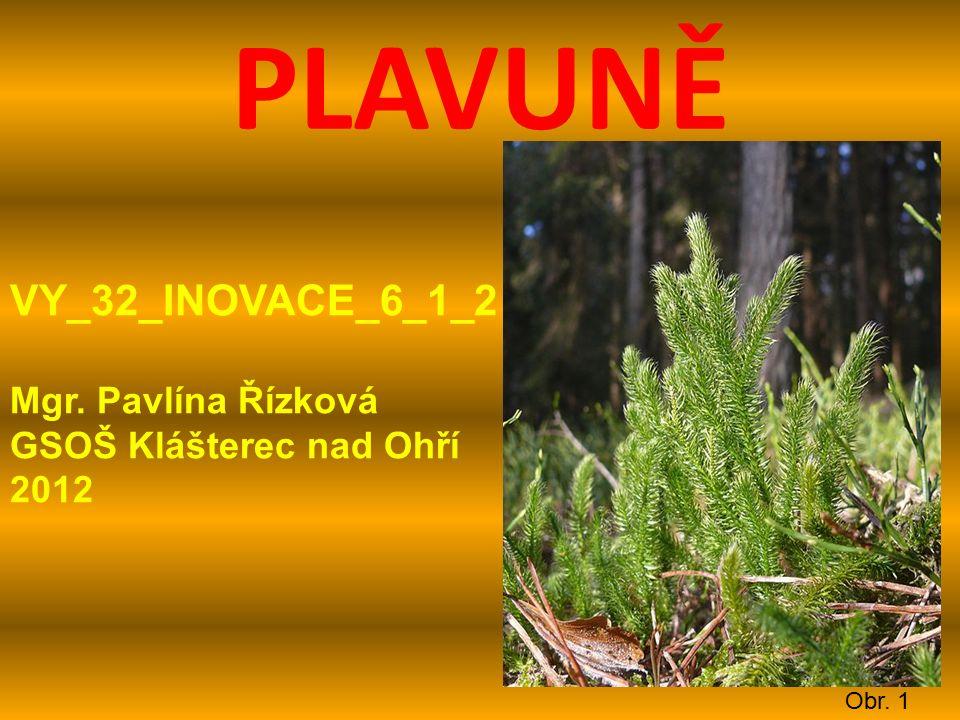 PLAVUNĚ Obr. 1 VY_32_INOVACE_6_1_2 Mgr. Pavlína Řízková GSOŠ Klášterec nad Ohří 2012