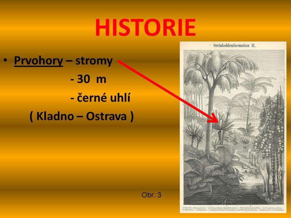HISTORIE Prvohory – stromy - 30 m - černé uhlí ( Kladno – Ostrava ) Obr. 3