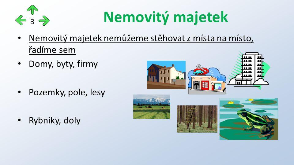 Nemovitý majetek nemůžeme stěhovat z místa na místo, řadíme sem Domy, byty, firmy Pozemky, pole, lesy Rybníky, doly Nemovitý majetek 3