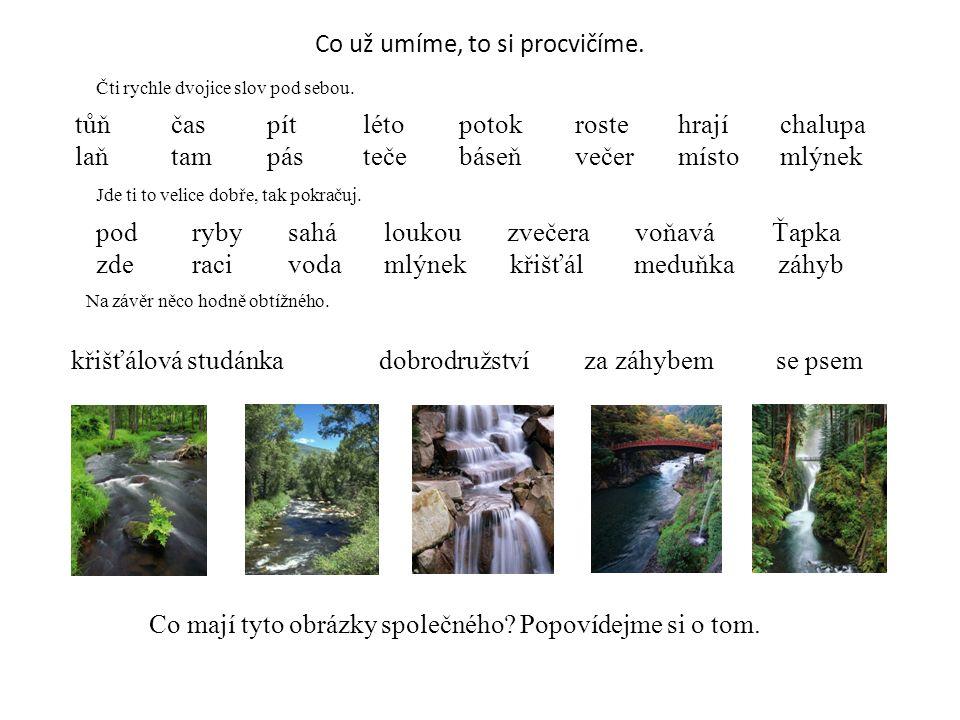 Voda – základ života Tůň Léto je čas dobrodružství.