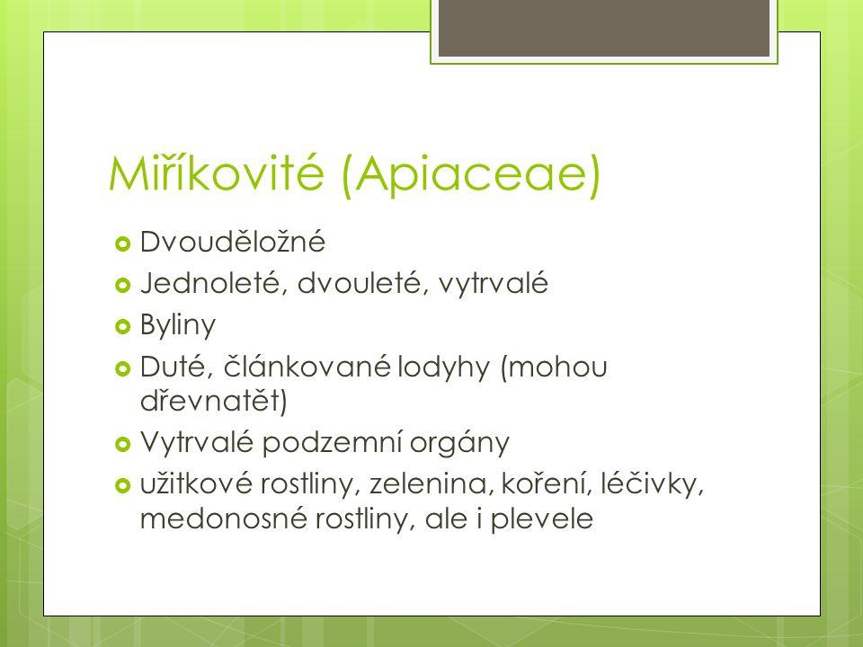 Miříkovité (Apiaceae)  Dvouděložné  Jednoleté, dvouleté, vytrvalé  Byliny  Duté, článkované lodyhy (mohou dřevnatět)  Vytrvalé podzemní orgány  užitkové rostliny, zelenina, koření, léčivky, medonosné rostliny, ale i plevele
