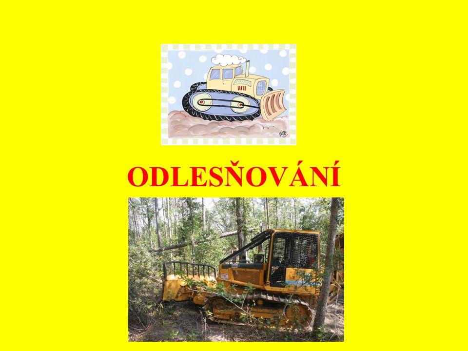 Důvody odlesňování člověkem: těžba dřeva využití půdy, na které lesy stojí, pro: - pastviny - zemědělské hospodaření (pole) - sídla - těžbu nerostných surovin - průmyslovou zónu - komunikace