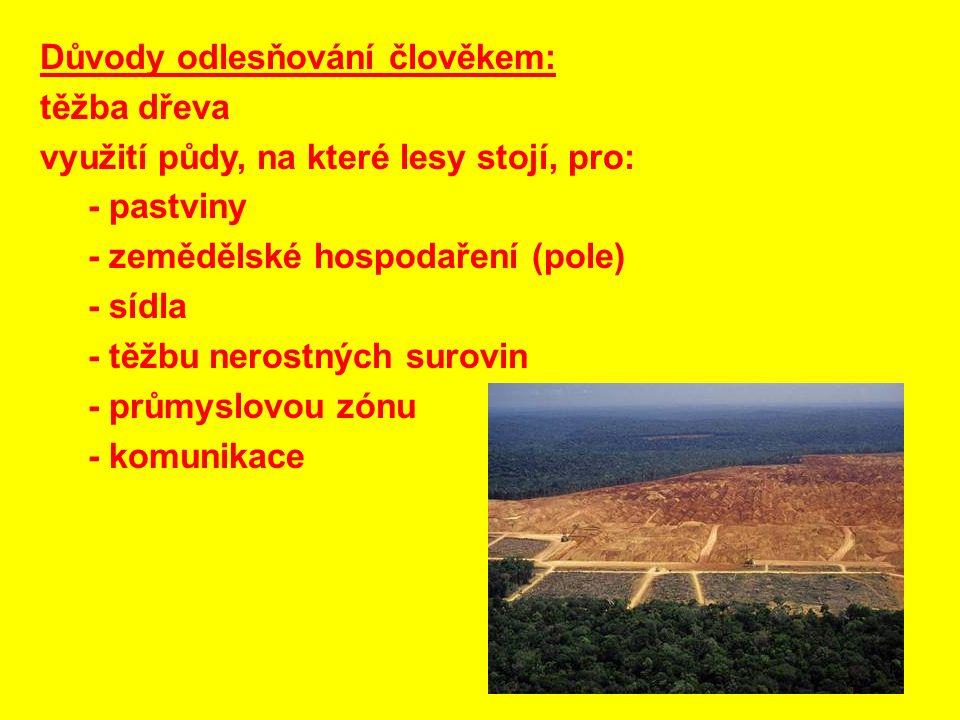 Důvody odlesňování člověkem: těžba dřeva využití půdy, na které lesy stojí, pro: - pastviny - zemědělské hospodaření (pole) - sídla - těžbu nerostných