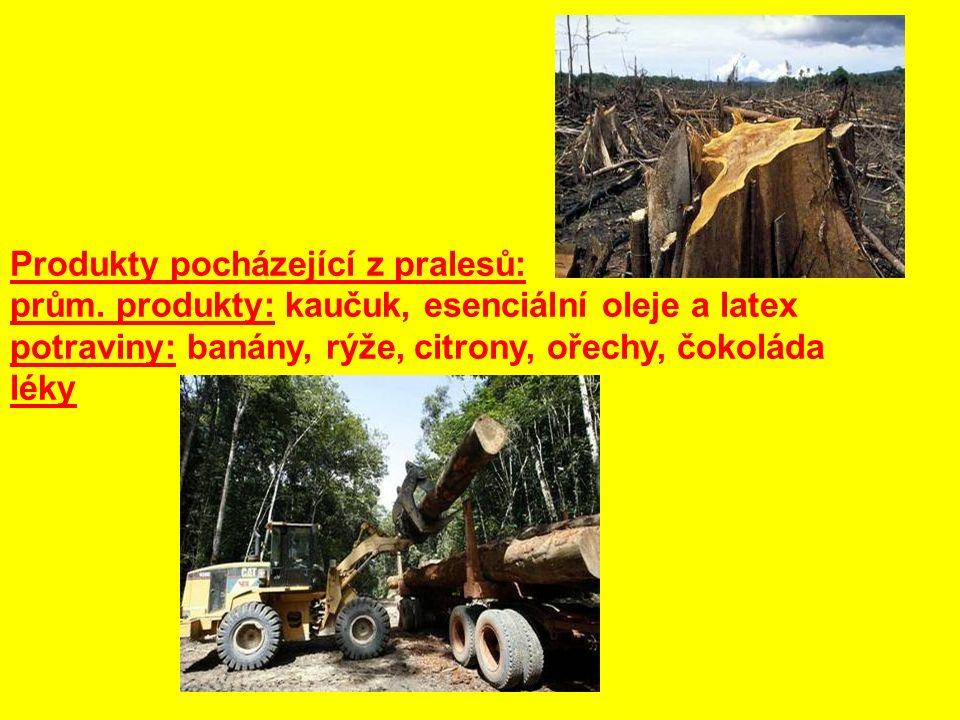 Produkty pocházející z pralesů: prům. produkty: kaučuk, esenciální oleje a latex potraviny: banány, rýže, citrony, ořechy, čokoláda léky