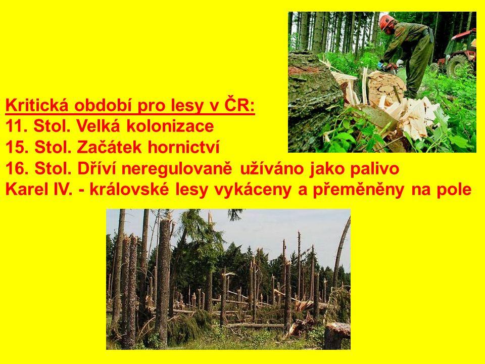 Kritická období pro lesy v ČR: 11. Stol. Velká kolonizace 15.