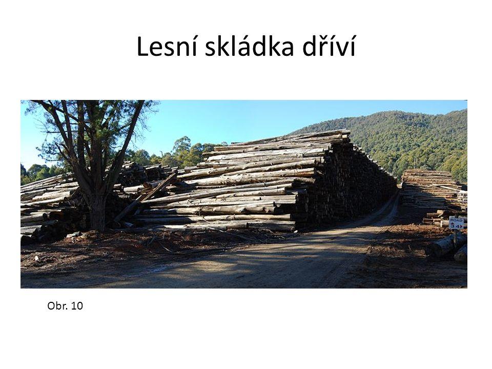 Lesní skládka dříví Obr. 10