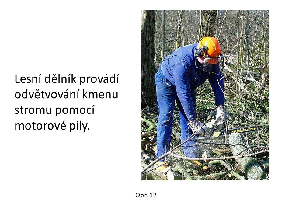 Lesní dělník provádí odvětvování kmenu stromu pomocí motorové pily. Obr. 12