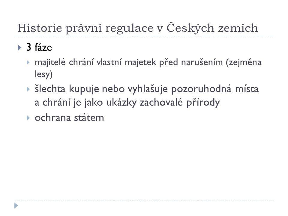 1.etapa - majitelé  Přemysl Otakar II.  2. pol.