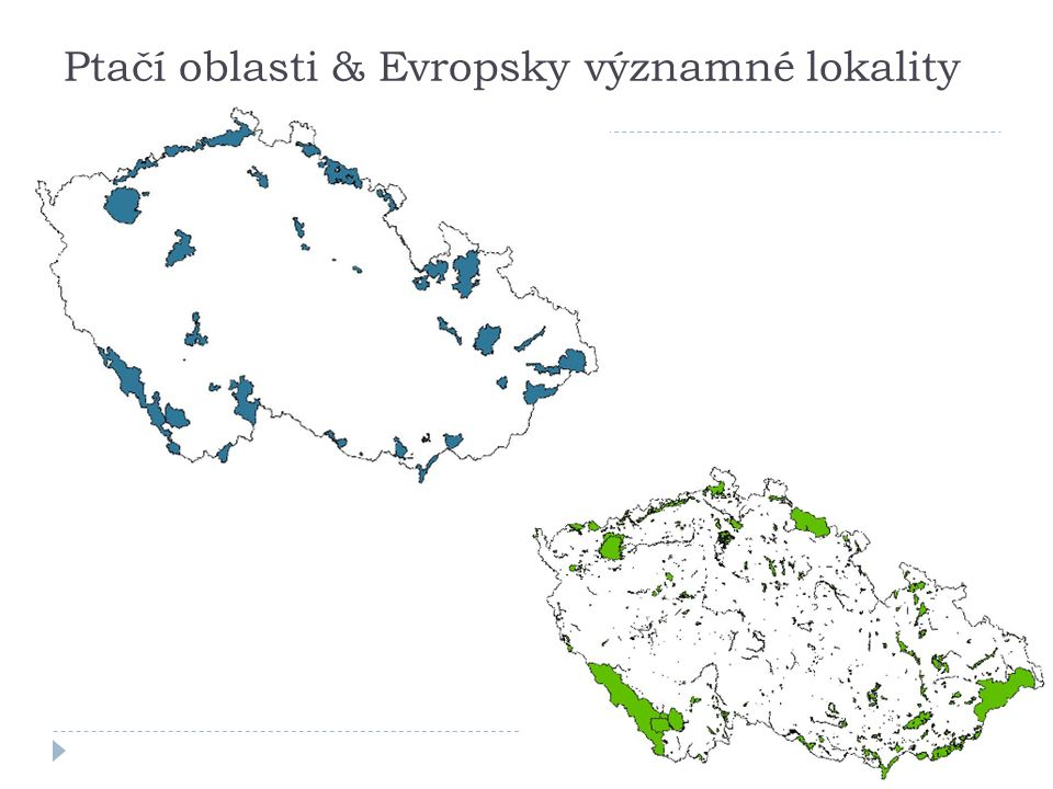 Ptačí oblasti & Evropsky významné lokality