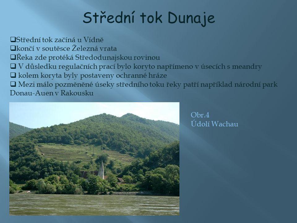 Střední tok Dunaje  Střední tok začíná u Vídně  končí v soutěsce Železná vrata  Řeka zde protéká Středodunajskou rovinou  V důsledku regulačních prací bylo koryto napřímeno v úsecích s meandry  kolem koryta byly postaveny ochranné hráze  Mezi málo pozměněné úseky středního toku řeky patří například národní park Donau-Auen v Rakousku Obr.4 Údolí Wachau