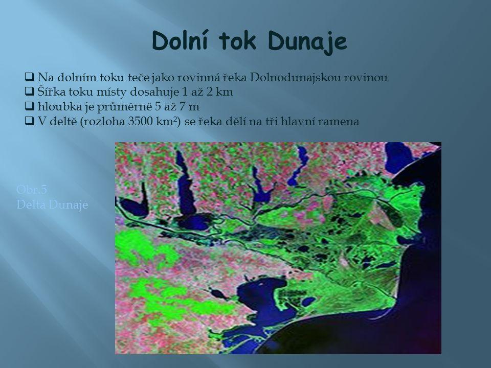Dolní tok Dunaje  Na dolním toku teče jako rovinná řeka Dolnodunajskou rovinou  Šířka toku místy dosahuje 1 až 2 km  hloubka je průměrně 5 až 7 m  V deltě (rozloha 3500 km²) se řeka dělí na tři hlavní ramena Obr.5 Delta Dunaje