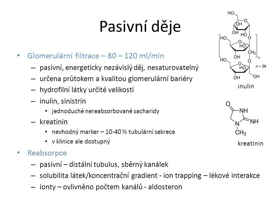 Pasivní děje Glomerulární filtrace – 80 – 120 ml/min – pasivní, energeticky nezávislý děj, nesaturovatelný – určena průtokem a kvalitou glomerulární bariéry – hydrofilní látky určité velikosti – inulin, sinistrin jednoduché nereabsorbované sacharidy – kreatinin nevhodný marker – 10-40 % tubulární sekrece v klinice ale dostupný Reabsorpce – pasivní – distální tubulus, sběrný kanálek – solubilita látek/koncentrační gradient - ion trapping – lékové interakce – ionty – ovlivněno počtem kanálů - aldosteron inulin kreatinin