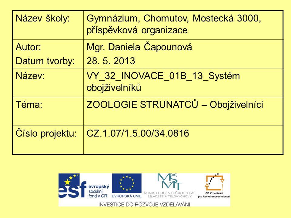 Název školy:Gymnázium, Chomutov, Mostecká 3000, příspěvková organizace Autor: Datum tvorby: Mgr. Daniela Čapounová 28. 5. 2013 Název:VY_32_INOVACE_01B