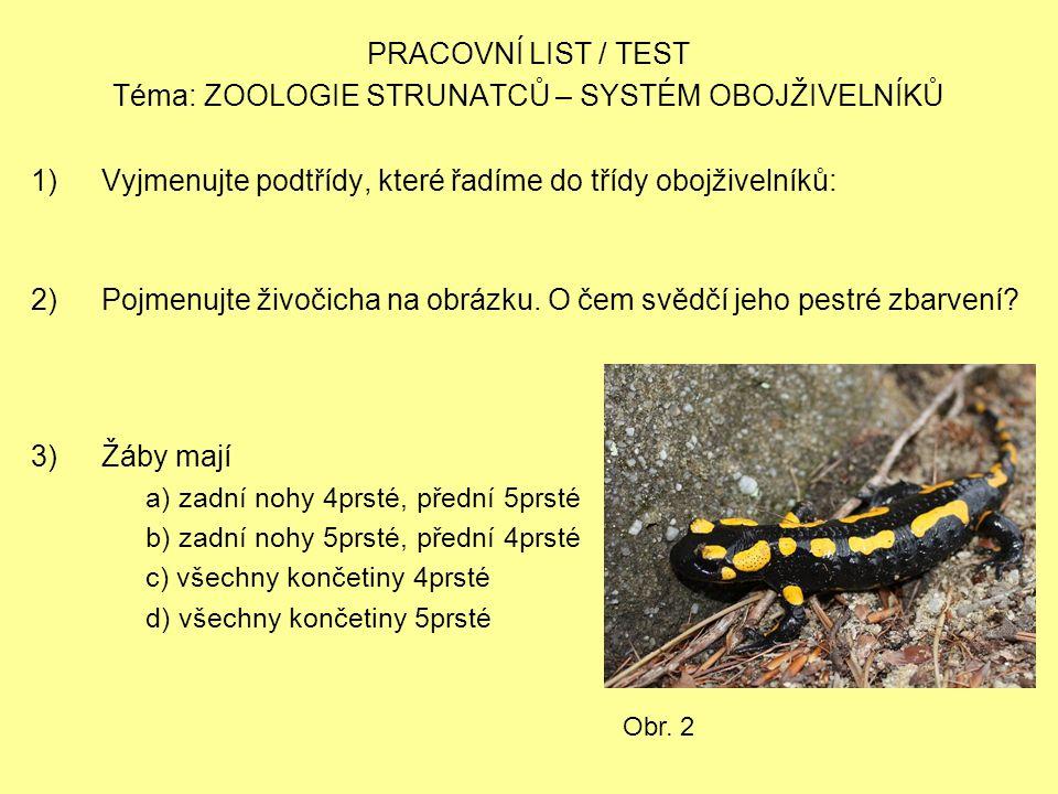 PRACOVNÍ LIST / TEST Téma: ZOOLOGIE STRUNATCŮ – SYSTÉM OBOJŽIVELNÍKŮ 1)Vyjmenujte podtřídy, které řadíme do třídy obojživelníků: 2)Pojmenujte živočich
