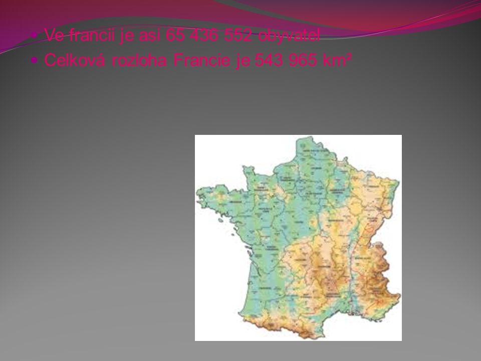 Kultura Francie hrála po celá staletí velmi důležitou roli jako kulturní centrum celé Evropy v čele s Paříží.