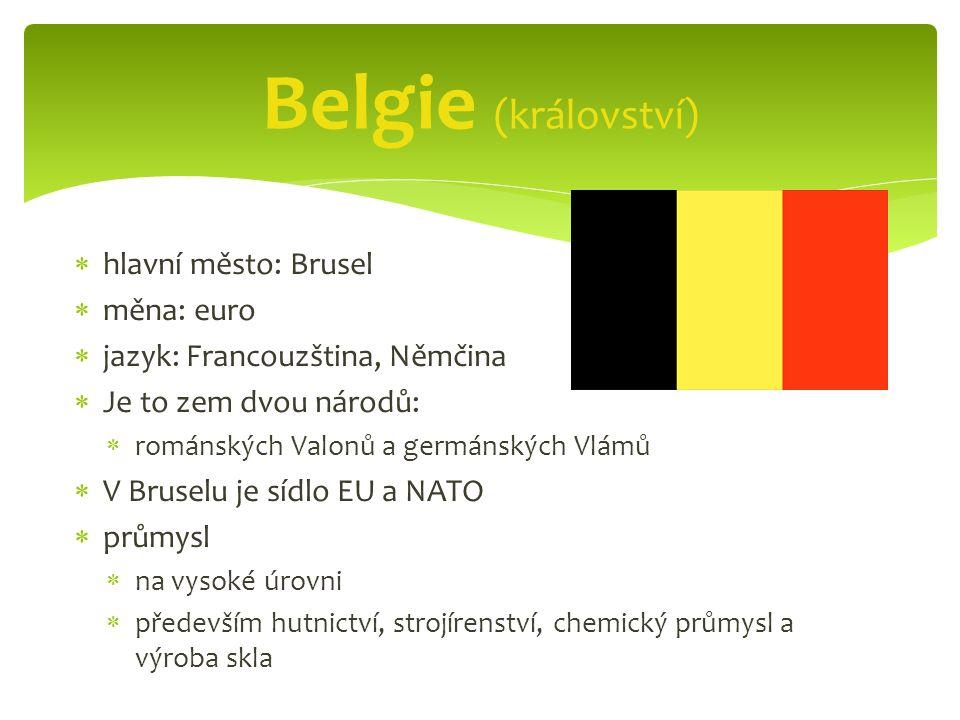  hlavní město: Brusel  měna: euro  jazyk: Francouzština, Němčina  Je to zem dvou národů:  románských Valonů a germánských Vlámů  V Bruselu je sídlo EU a NATO  průmysl  na vysoké úrovni  především hutnictví, strojírenství, chemický průmysl a výroba skla Belgie (království)