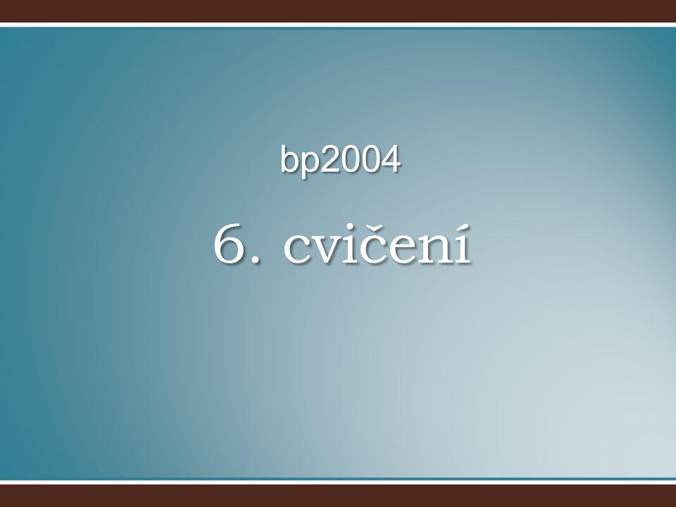 6. cvičení bp2004