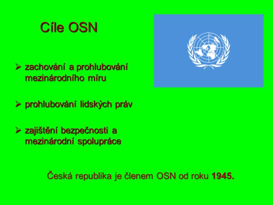 Cíle OSN  zachování a prohlubování mezinárodního míru  prohlubování lidských práv  zajištění bezpečnosti a mezinárodní spolupráce Česká republika je členem OSN od roku 1945.
