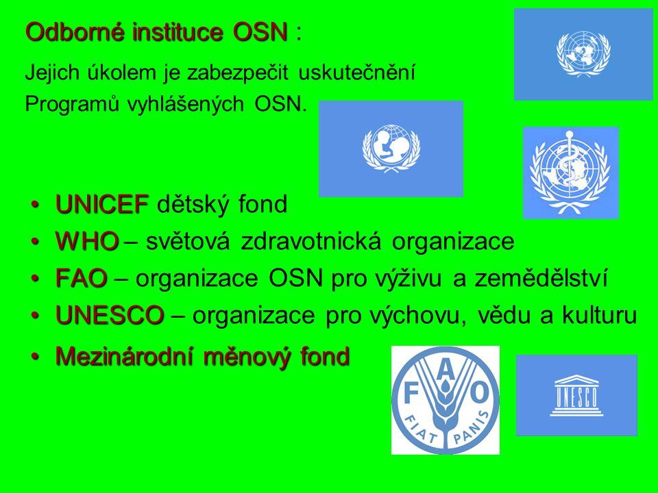 Odborné instituceOSN Odborné instituce OSN : UNICEFUNICEF dětský fond WHOWHO – světová zdravotnická organizace FAOFAO – organizace OSN pro výživu a zemědělství UNESCOUNESCO – organizace pro výchovu, vědu a kulturu Mezinárodní měnový fondMezinárodní měnový fond Jejich úkolem je zabezpečit uskutečnění Programů vyhlášených OSN.