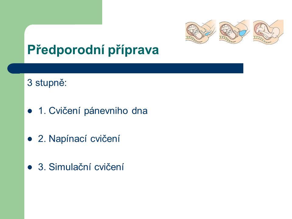 Předporodní příprava 3 stupně: 1. Cvičení pánevniho dna 2. Napínací cvičení 3. Simulační cvičení