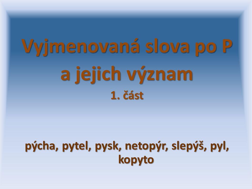 Vyjmenovaná slova po P a jejich význam 1. část pýcha, pytel, pysk, netopýr, slepýš, pyl, kopyto