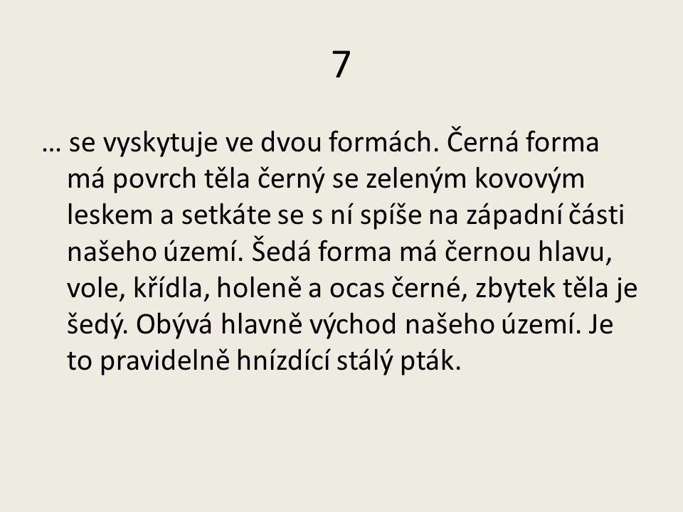 7 … se vyskytuje ve dvou formách.