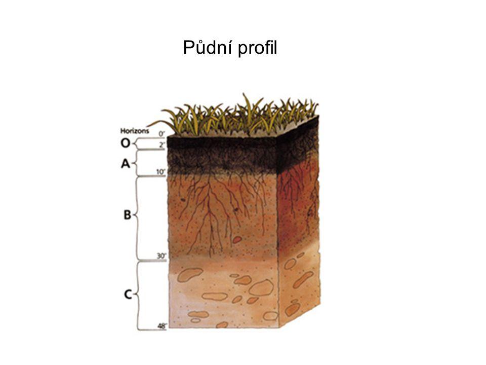 Test 1.Jak vzniká půda.2.Kteří činitelé ovlivňují vznik půdy.