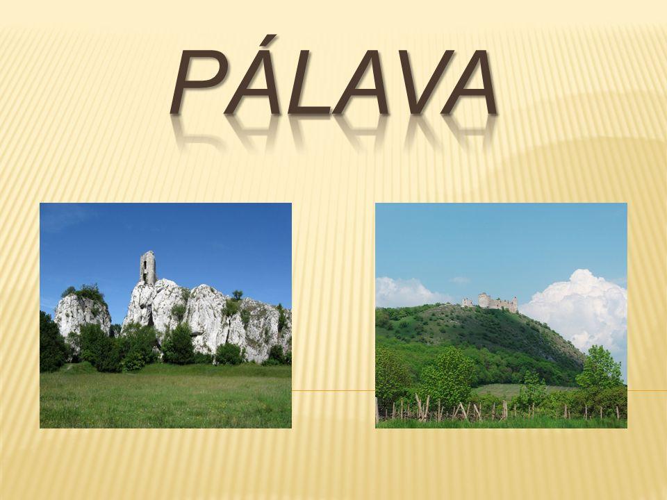  Široké okolí města Mikulov je začleněno do Chráněné krajinné oblasti Pálava.