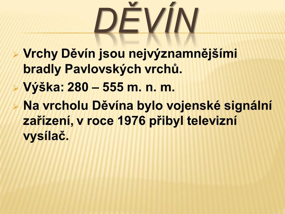  Vrchy Děvín jsou nejvýznamnějšími bradly Pavlovských vrchů.