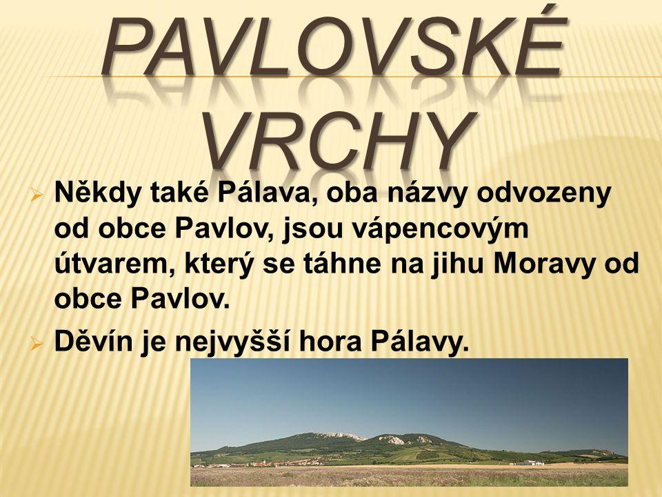  Někdy také Pálava, oba názvy odvozeny od obce Pavlov, jsou vápencovým útvarem, který se táhne na jihu Moravy od obce Pavlov.