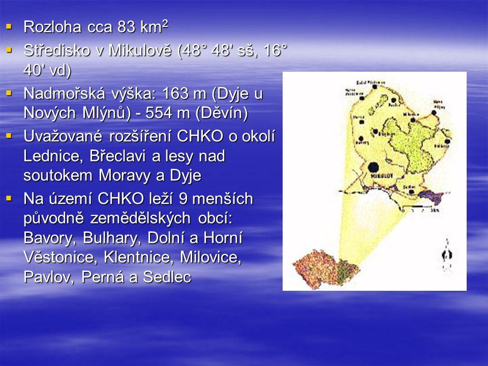  Rozloha cca 83 km 2  Středisko v Mikulově (48° 48 sš, 16° 40 vd)  Nadmořská výška: 163 m (Dyje u Nových Mlýnů) - 554 m (Děvín)  Uvažované rozšíření CHKO o okolí Lednice, Břeclavi a lesy nad soutokem Moravy a Dyje  Na území CHKO leží 9 menších původně zemědělských obcí: Bavory, Bulhary, Dolní a Horní Věstonice, Klentnice, Milovice, Pavlov, Perná a Sedlec