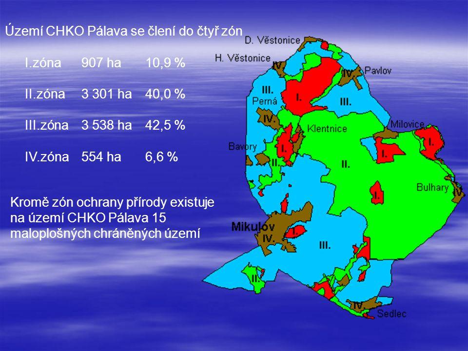 Kromě zón ochrany přírody existuje na území CHKO Pálava 15 maloplošných chráněných území Území CHKO Pálava se člení do čtyř zón I.zóna907 ha10,9 % II.zóna3 301 ha40,0 % III.zóna3 538 ha42,5 % IV.zóna554 ha6,6 %