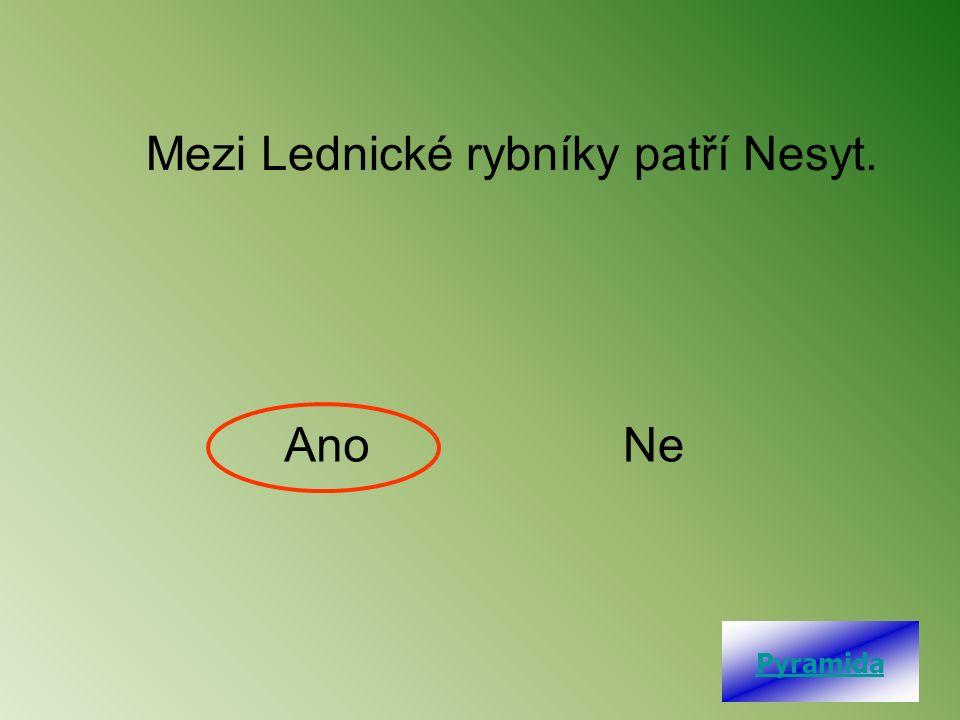Mezi Lednické rybníky patří Nesyt. AnoNe Pyramida
