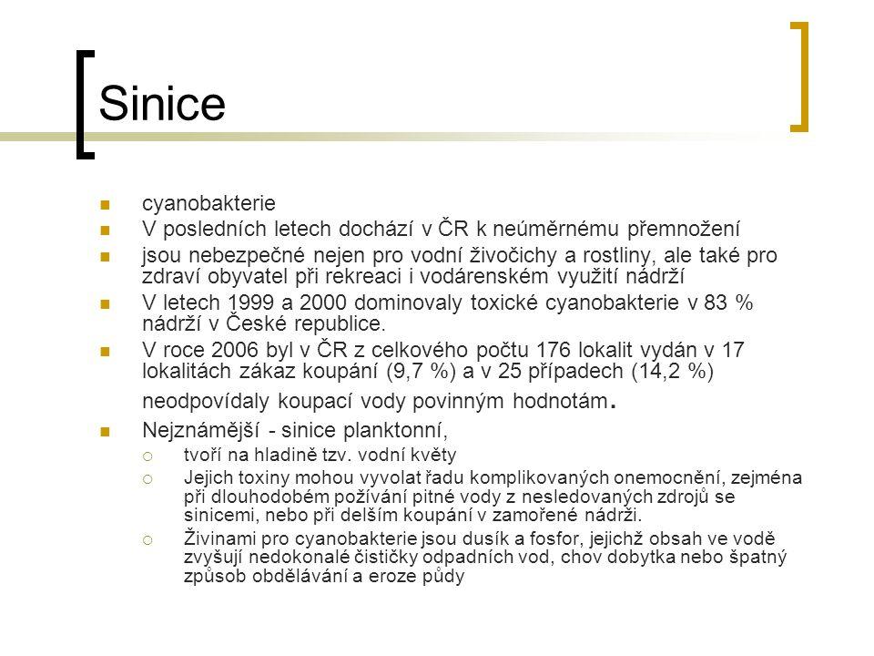 Sinice cyanobakterie V posledních letech dochází v ČR k neúměrnému přemnožení jsou nebezpečné nejen pro vodní živočichy a rostliny, ale také pro zdraví obyvatel při rekreaci i vodárenském využití nádrží V letech 1999 a 2000 dominovaly toxické cyanobakterie v 83 % nádrží v České republice.