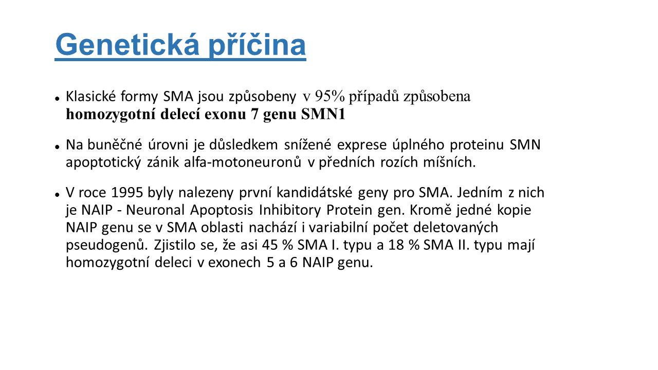 Genetická příčina Klasické formy SMA jsou způsobeny v 95% případů způsobena homozygotní delecí exonu 7 genu SMN1 Na buněčné úrovni je důsledkem snížen