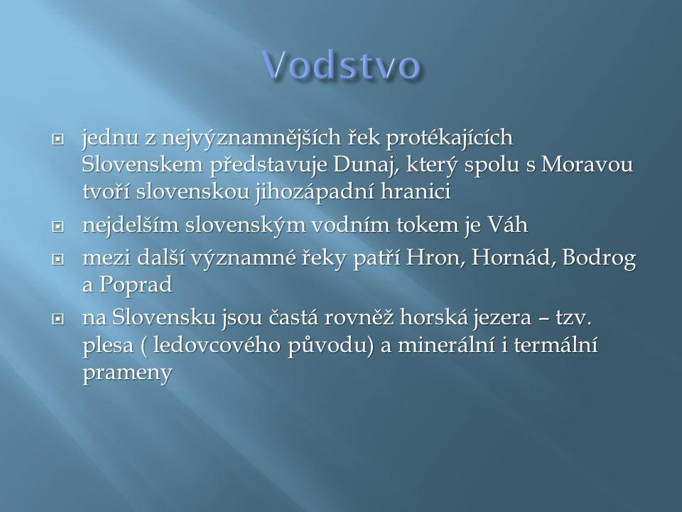  jednu z nejvýznamnějších řek protékajících Slovenskem představuje Dunaj, který spolu s Moravou tvoří slovenskou jihozápadní hranici  nejdelším slovenským vodním tokem je Váh  mezi další významné řeky patří Hron, Hornád, Bodrog a Poprad  na Slovensku jsou častá rovněž horská jezera – tzv.