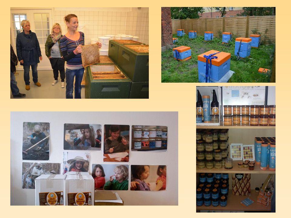 Dánsko – Kodaň Včelí farma BYBI Lidé bez domova mohou pomáhat či získat praxi a zaměstnání jako prodavači medu či pomocníci v projektu, který byl vybrán v roce 2010 jako jeden z deseti nejlepších sociálních inovací v EU a vyhrál Danish Social Enterprise Award 2013.