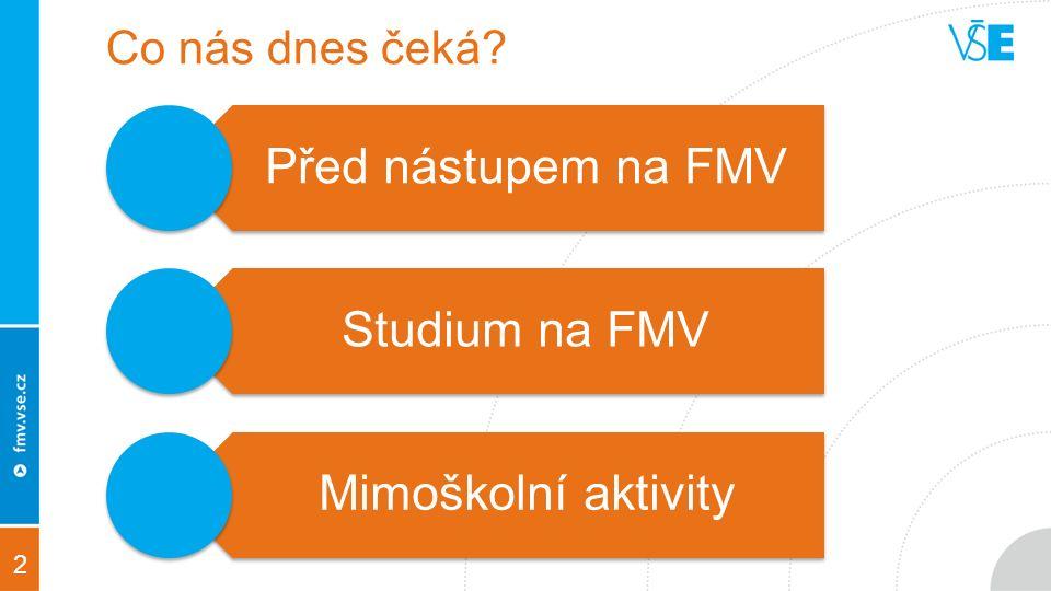 2 Co nás dnes čeká Před nástupem na FMV Studium na FMV Mimoškolní aktivity