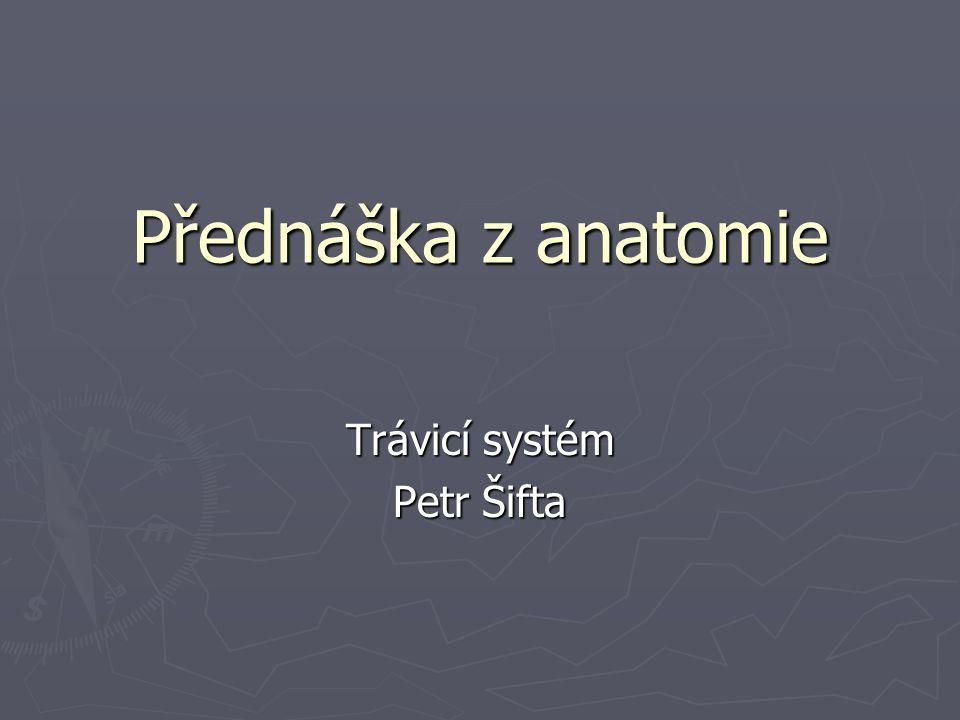 Systema digestorium ► Cavitas oris ► Pharynx, hltan ► Oesophageus, jícen ► Gaster, žaludek ► Intestinum tenue ► Hepar, játra ► Pankreas ► Intestinum crassum