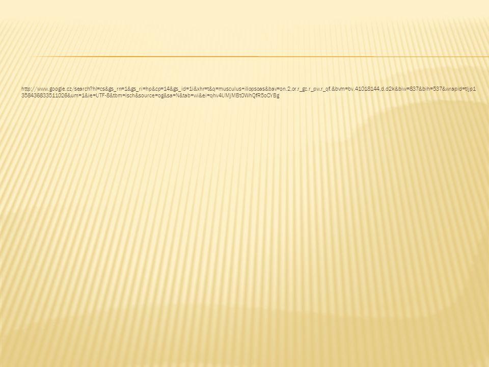 http://www.google.cz/search?hl=cs&gs_rn=1&gs_ri=hp&cp=14&gs_id=1i&xhr=t&q=musculus+iliopsoas&bav=on.2,or.r_gc.r_pw.r_qf.&bvm=bv.41018144,d.d2k&biw=837