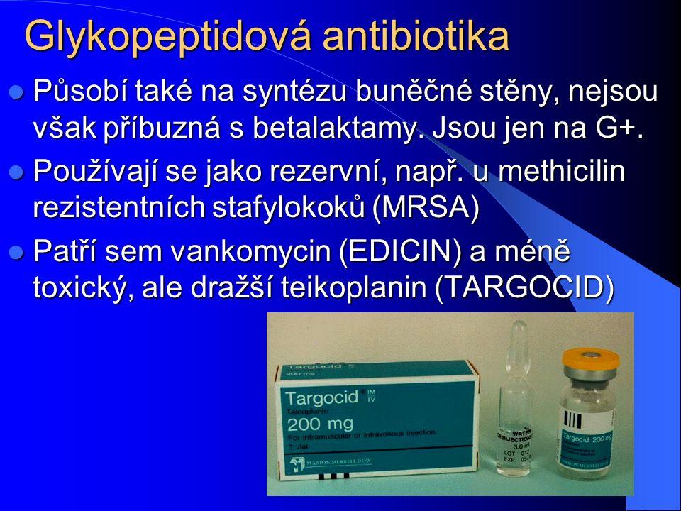Glykopeptidová antibiotika Působí také na syntézu buněčné stěny, nejsou však příbuzná s betalaktamy.