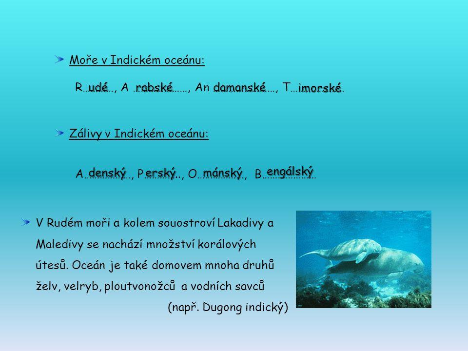 Moře v Indickém oceánu: R…………, A …………………, An ……………………, T………………… Zálivy v Indickém oceánu: A………………, P………….., O………………, B………………… engálský mánskýerskýdenský imorské damanskérabskéudé V Rudém moři a kolem souostroví Lakadivy a Maledivy se nachází množství korálových útesů.