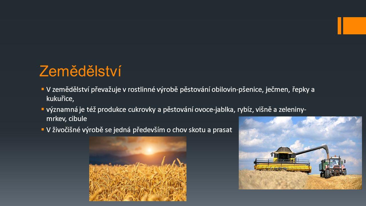 Zemědělství  V zemědělství převažuje v rostlinné výrobě pěstování obilovin-pšenice, ječmen, řepky a kukuřice,  významná je též produkce cukrovky a pěstování ovoce-jablka, rybíz, višně a zeleniny- mrkev, cibule  V živočišné výrobě se jedná především o chov skotu a prasat