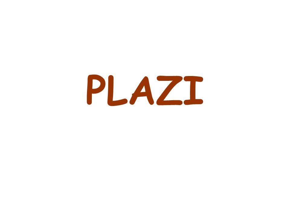 PLAZI