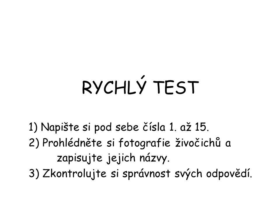 RYCHLÝ TEST 1) Napište si pod sebe čísla 1. až 15.