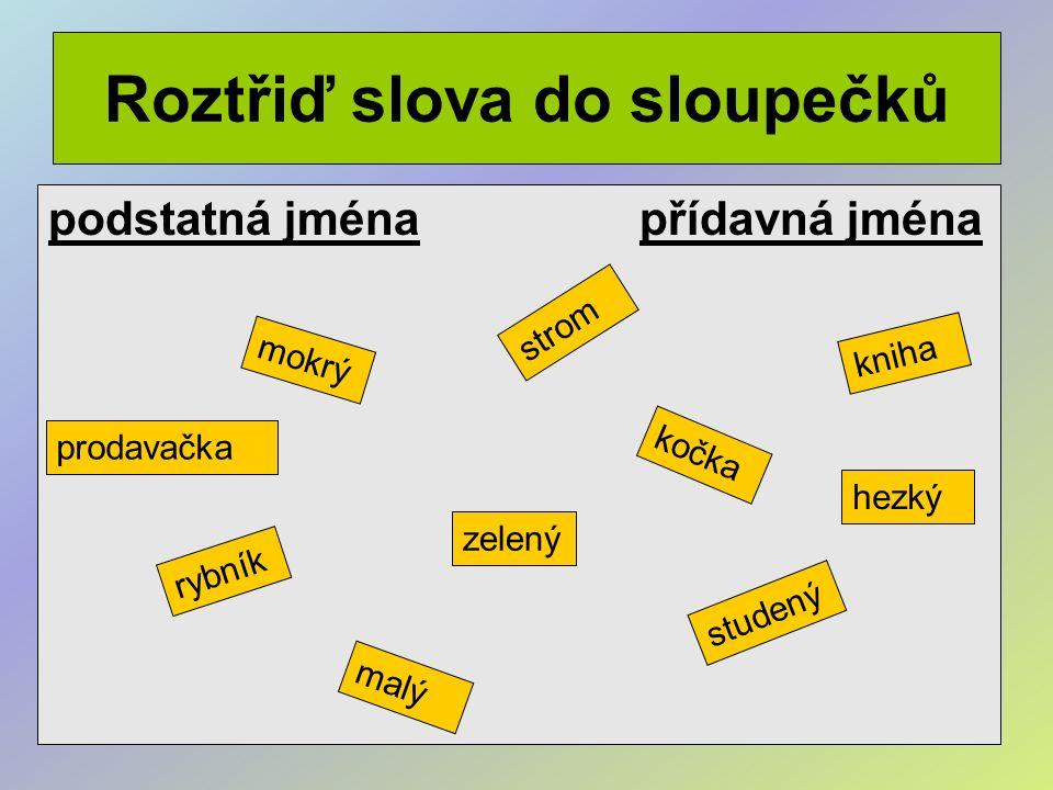Roztřiď slova do sloupečků podstatná jména přídavná jména mokrý strom kočka rybník zelený studený kniha malý prodavačka hezký